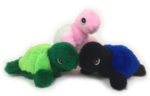 Turtle-Full-Group